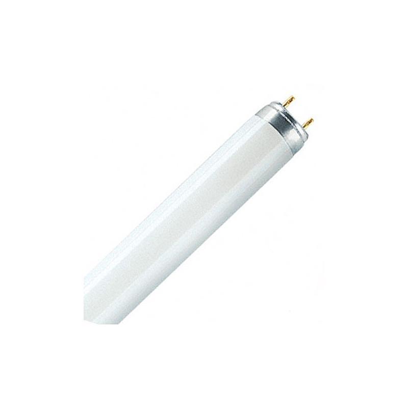 D65-1200-T8 - Lampe de rechange pour cabine à lumière Verivide