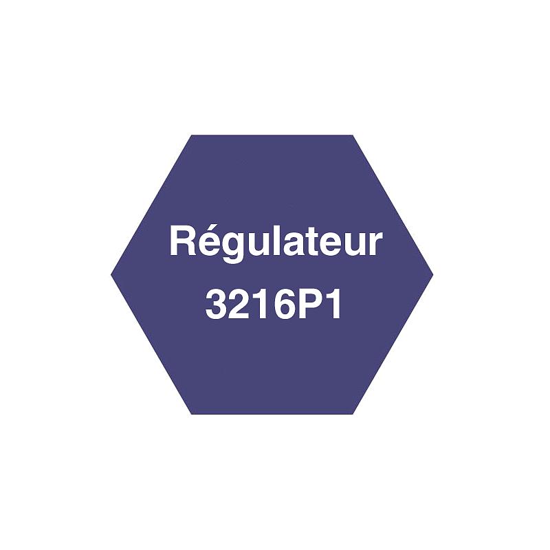 Évolution du régulateur en 3216P1 - Carbolite
