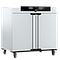 Incubateur bactériologique IN450plus - Memmert