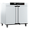 Incubateur bactériologique ventilé IF450 - Memmert