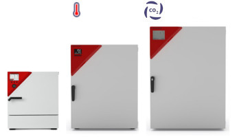 Incubateur à CO2 Binder