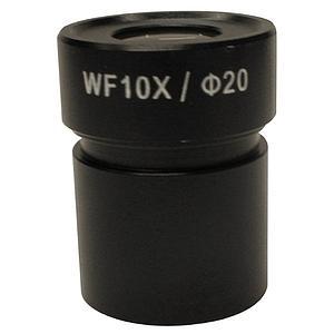 Oculaire micrométrique WF10x - Optika