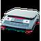 R31P6 - Balance Ohaus Ranger 3000