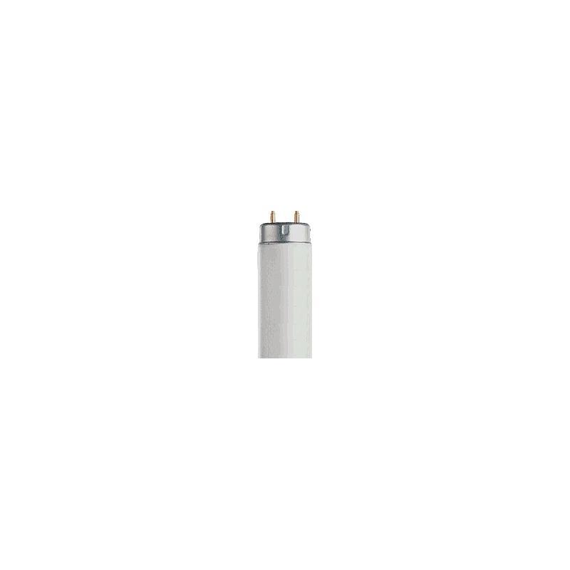 VER-600D65 - Lampe de rechange pour cabine à lumière Verivide